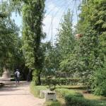 Огромный орлятник - самый заметный объект, зоосад Докучаевск
