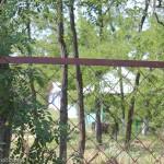 Деревянные домики - залог дешевого отдыха в Мелекино и гарантия короткого сезона