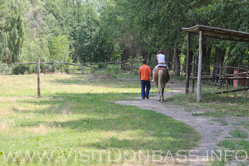 Прогулка на лошади дарит много положительных эмоций, Зоосад Докучаевск