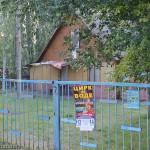 Деревянный домик на отшибе, возможно для воспитателей? Альбатрос Мелекино